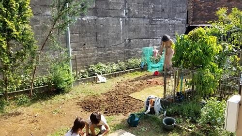 芝生を自分で植える整地