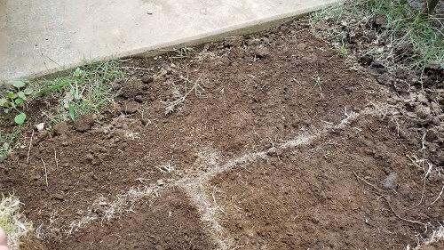 芝生の砂利や石をとる