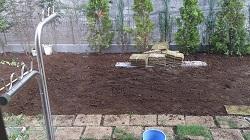 自分で芝生を植えてみた